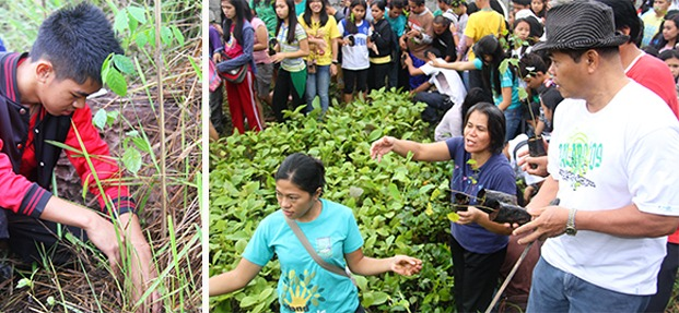 Left to right:  CMU faculty, staff and students participate the Annual tree planting activity
