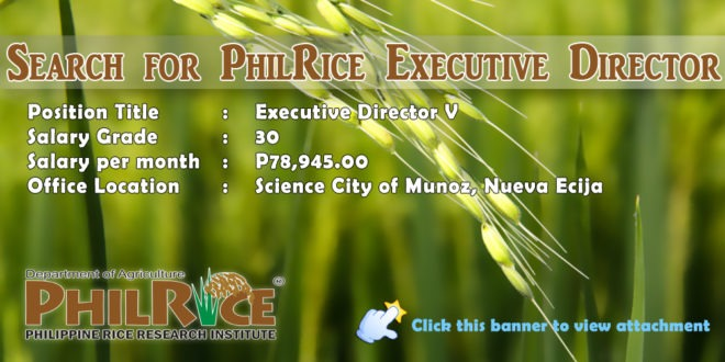 SEARCH FOR THE EXECUTIVE DIRECTOR OF THE PHILIPPINE RICE RESEARCH INSTITUTE(PHILRICE)