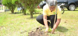 Symbolic Tree Planting at Fulbright Garden