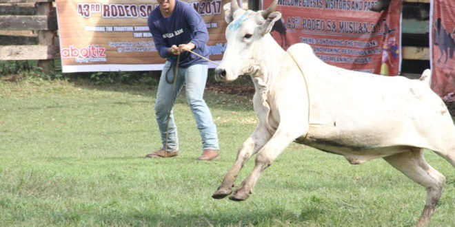 Rodeo sa Musuan draws Mindanao-wide participants
