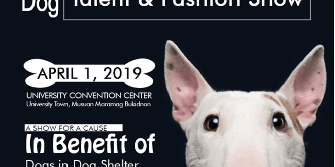 LOOK: DOG TALENT AND FASHION SHOW