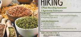 HIRING: The Department of Agronomy & Plant Breeding is looking for Two (2) Instructors for 1st Semester A.Y 2019-2020.